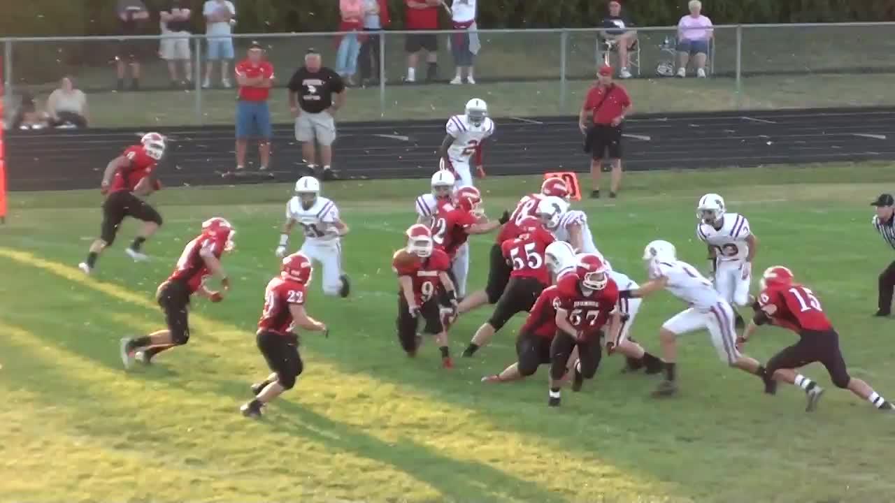 Wolf Playing Football Cody Wolf Playing Football